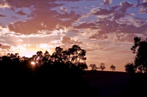 Sunrise at Eagleburra