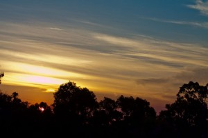 sunset-8901
